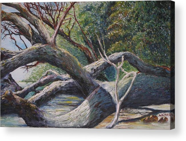 Landscape Acrylic Print featuring the painting Lazy Afternoon by Wendy Chua