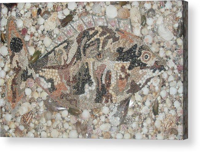 Seashells Acrylic Print featuring the mixed media Not A Piranha by Ben Sivells