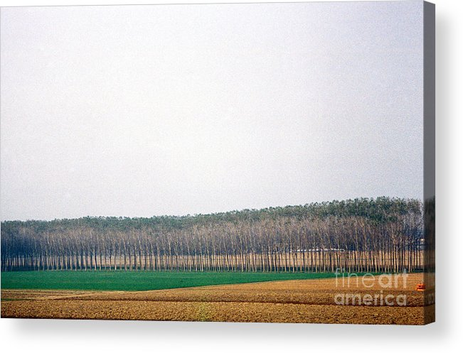 Farm Acrylic Print featuring the photograph On The Road To Venice by Valerie Lynn