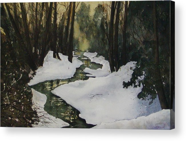 Watercolour Acrylic Print featuring the painting Silent Snow by Sharon Steinhaus