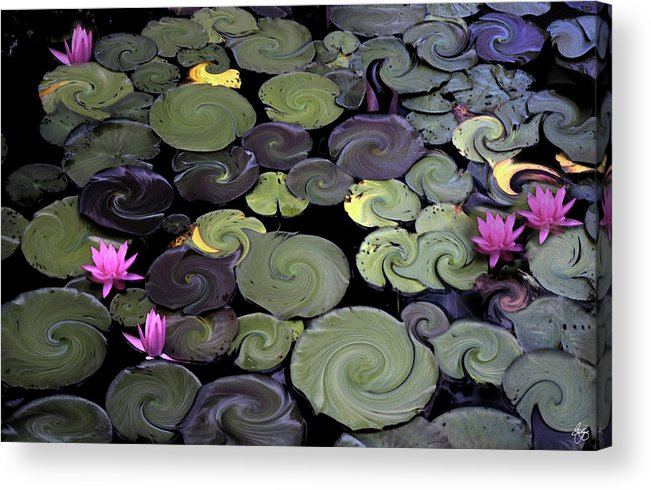 Lily Acrylic Print featuring the photograph Spinning Lilies by Wayne King
