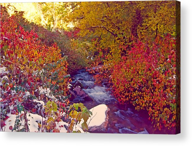 Stream Acrylic Print featuring the photograph Stream In Autumn by Steve Ohlsen