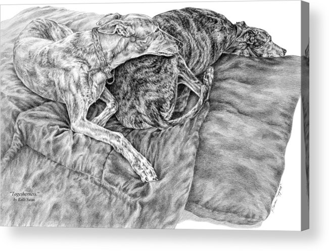 Greyhound Acrylic Print featuring the drawing Togetherness - Greyhound Dog Art Print by Kelli Swan