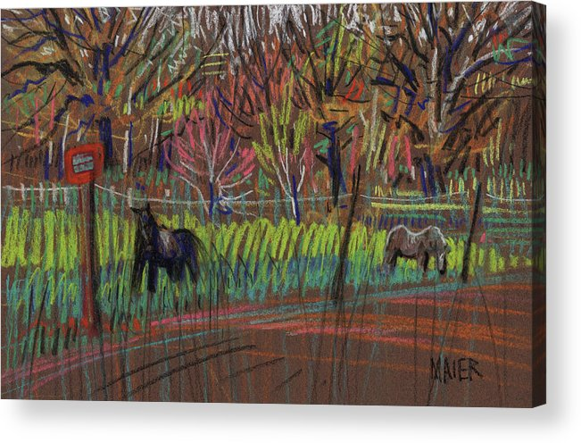 Ponies Acrylic Print featuring the drawing Two Ponies by Donald Maier