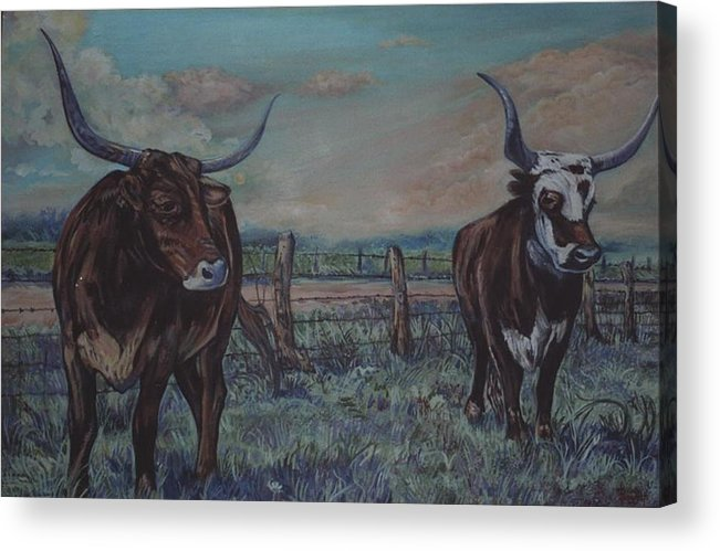 Animals Acrylic Print featuring the painting Wright Longhorns by Diann Baggett