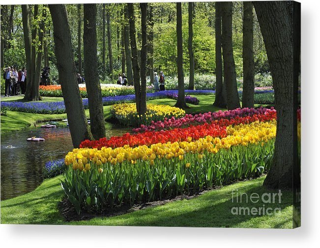 Colourful Acrylic Print featuring the photograph 090416p038 by Arterra Picture Library