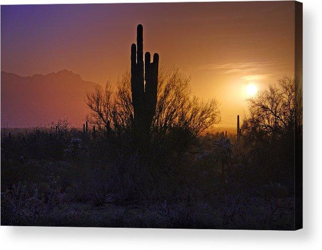 Sunrise Acrylic Print featuring the photograph A Sonoran Morning by Saija Lehtonen