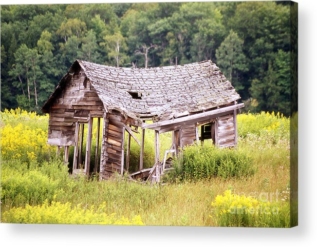 Shack Acrylic Print featuring the photograph Abandoned Shack by Alan Russo