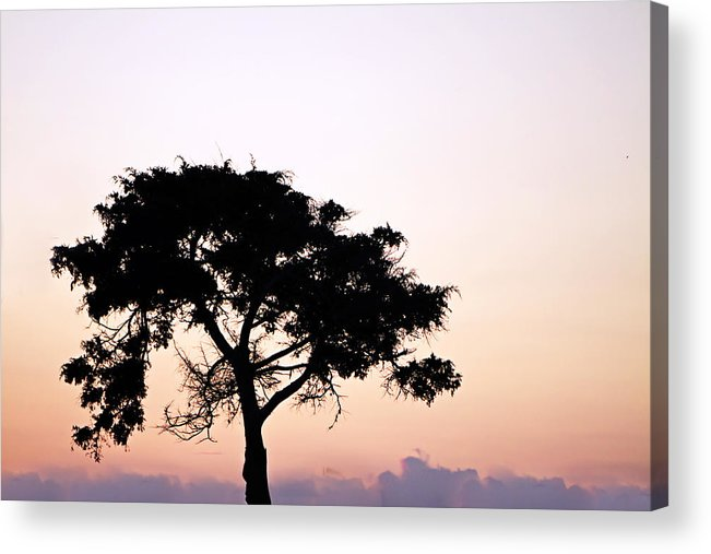 Photo Acrylic Print featuring the photograph Day's End 1 by Alan Hausenflock