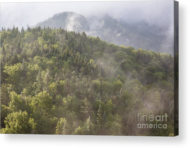 Franconia Notch Acrylic Print featuring the photograph Franconia Notch State Park - White Mountains Nh Usa by Erin Paul Donovan