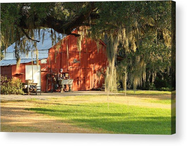 Barn Acrylic Print featuring the photograph Louisiana Barn by Ronald Olivier
