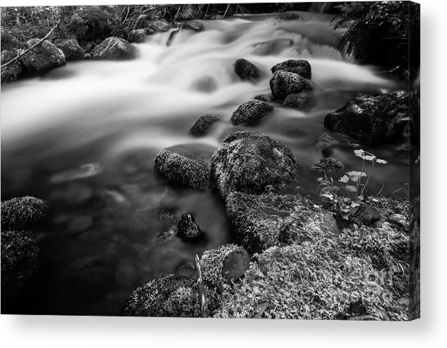Black And White Acrylic Print featuring the photograph Slow Creek by Andrea Gingerich