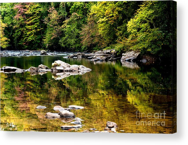 Williams River Acrylic Print featuring the photograph Williams River Autumn by Thomas R Fletcher