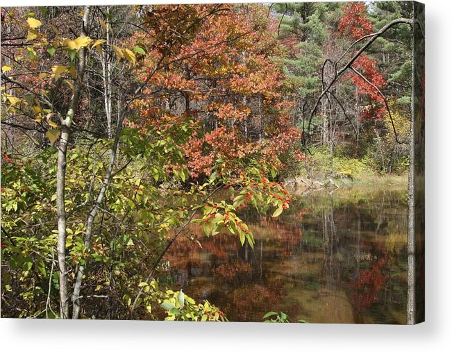 Fall In Upstate Ny Acrylic Print featuring the photograph Fall In Upstate Ny by Edward Kocienski