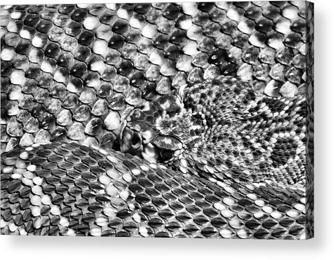 A Dangerous Abstract Acrylic Print featuring the photograph A Dangerous Abstract by JC Findley
