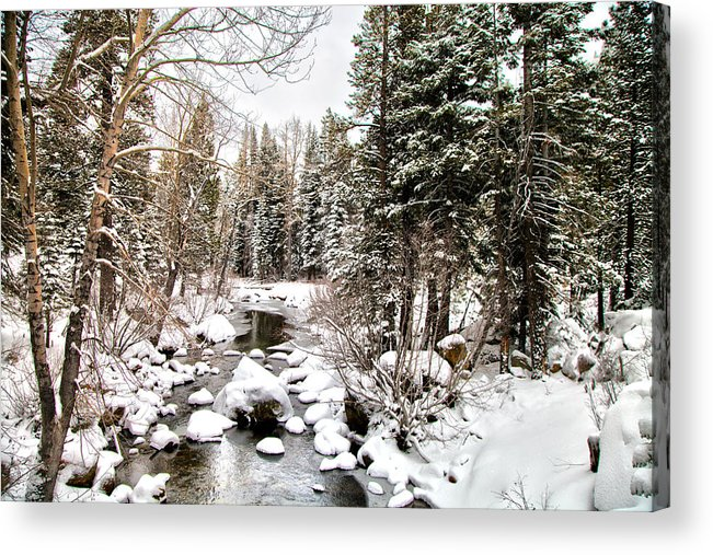 Lake Tahoe Acrylic Print featuring the digital art A Snow Day by Joe Fernandez