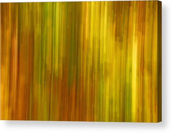 Abstract Acrylic Print featuring the photograph Abstract Nature Background by Gry Thunes