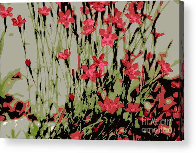Red Acrylic Print featuring the photograph Abstract Red Flowers by Kenny Glotfelty