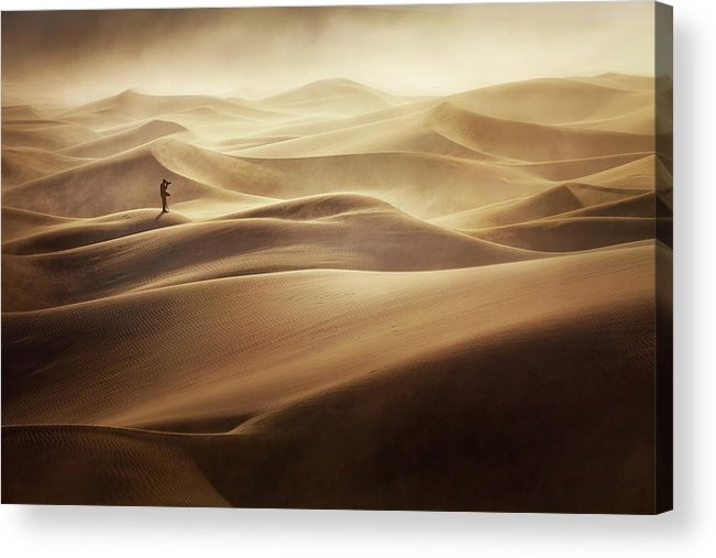 Desert Acrylic Print featuring the photograph Alone by Mirko Vecernik
