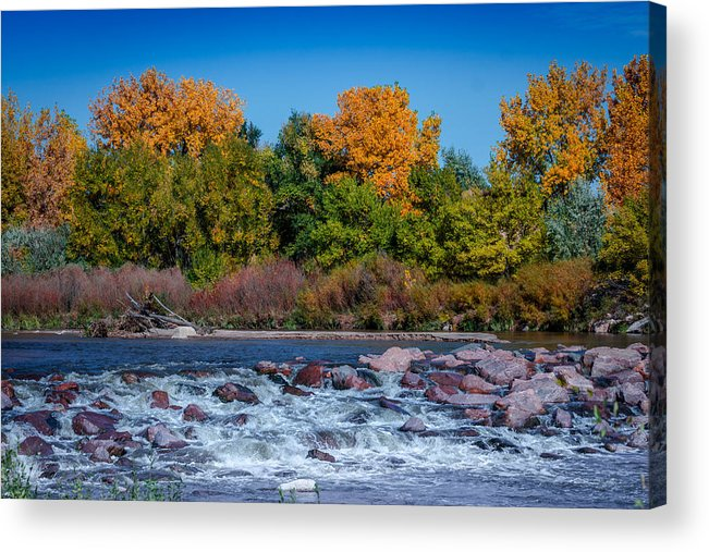 Creek Acrylic Print featuring the photograph Along The Creek by Ernie Echols