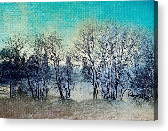 Nature Photography Acrylic Print featuring the photograph Along The Willamette by Bonnie Bruno