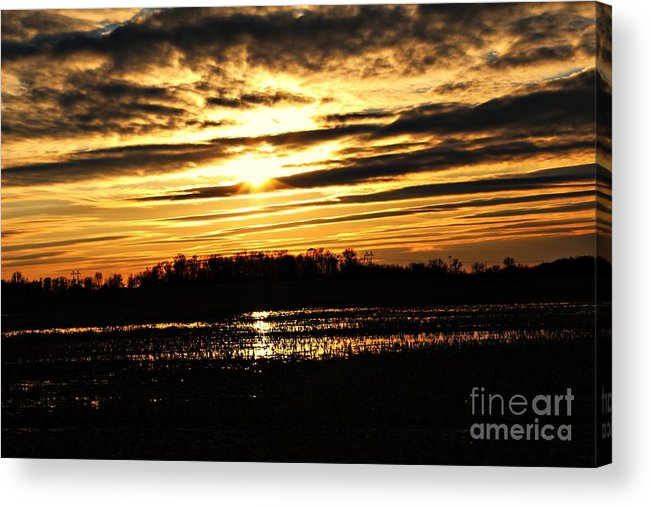 Acrylic Print featuring the photograph Amber Skys Four by Scott B Bennett