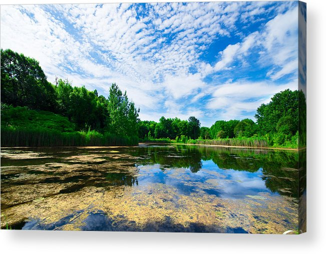 Montreal Acrylic Print featuring the photograph Angrignon Park Landscape 1 by Andy Fung