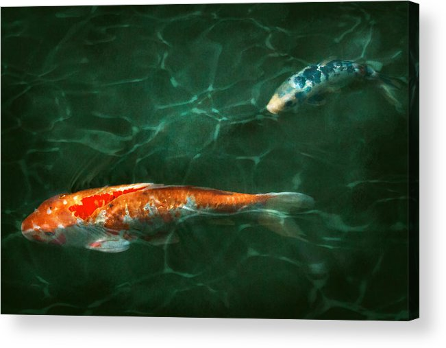 Koi Acrylic Print featuring the photograph Animal - Fish - Koi - Another Fish Story by Mike Savad