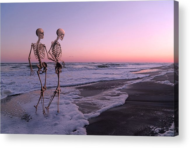 Topsail Acrylic Print featuring the digital art Anthropology Shared Similarities by Betsy Knapp