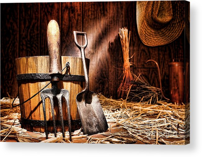 Gardening Acrylic Print featuring the photograph Antique Gardening Tools by Olivier Le Queinec