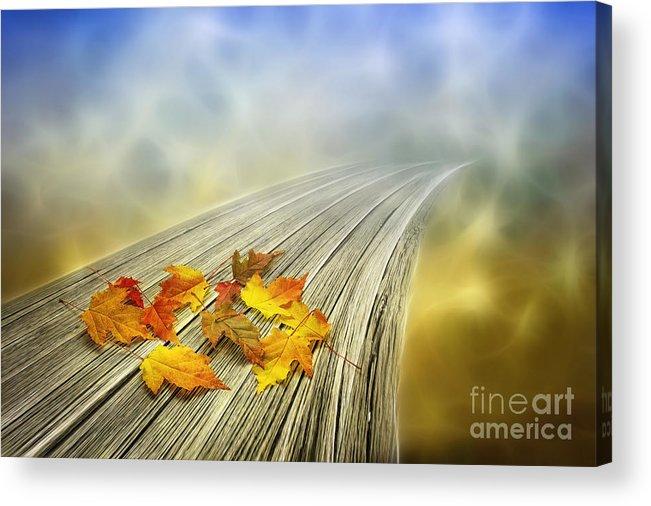Art Acrylic Print featuring the photograph Autumn Bridge by Veikko Suikkanen