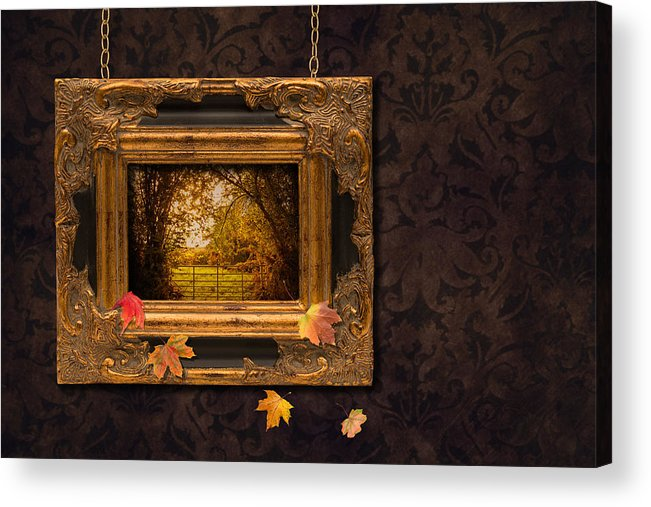 Autumn Acrylic Print featuring the photograph Autumn Frame by Amanda Elwell
