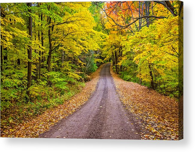 2014 Acrylic Print featuring the photograph Autumn Journey by Steve Harrington