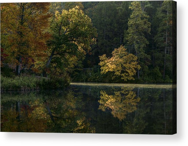 Carol R Montoya Acrylic Print featuring the photograph Autumn Light by Carol Montoya