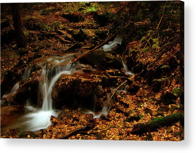 Colorado Acrylic Print featuring the photograph Autumn Washed Away by Jeremy Rhoades