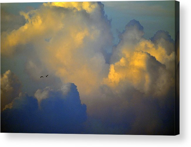 Color Acrylic Print featuring the photograph Blue And Yellow Clouds At Sunset With Birds Usa by Sally Rockefeller