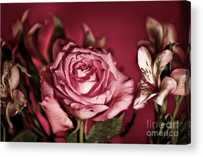Rose Acrylic Print featuring the photograph Bold Pink Rose Bouquet by Linda Matlow