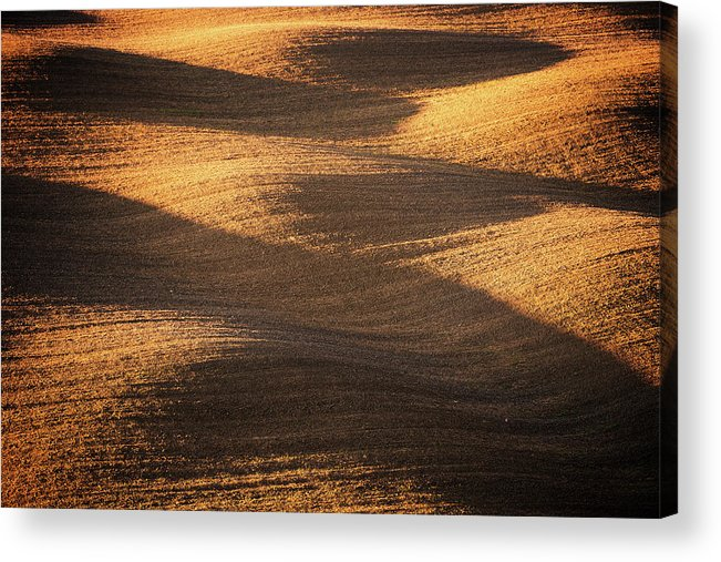 Tranquility Acrylic Print featuring the photograph Bronze Waves by Philipp Klinger