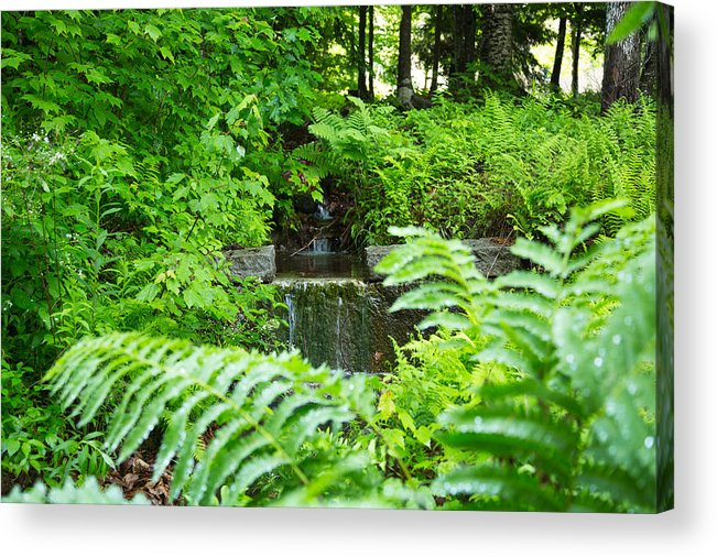 Waterfall Acrylic Print featuring the photograph Brook Waterfall by Norm Rodrigue