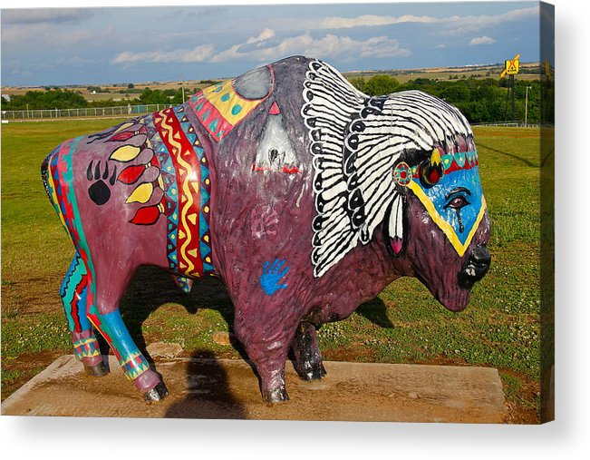 Buffalo Acrylic Print featuring the photograph Buffalo Artwork by Denise Mazzocco