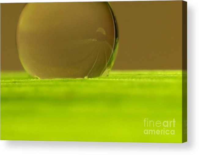 Raindrop Acrylic Print featuring the photograph C Ribet Orbscape 0238 by C Ribet