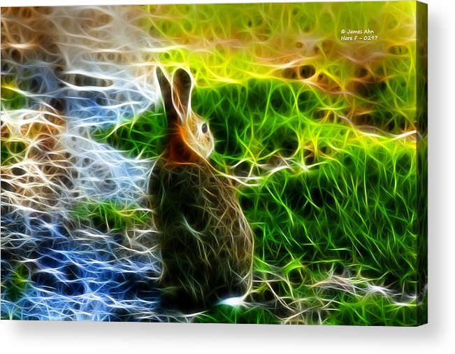 Fractal Art Acrylic Print featuring the digital art California Hare - 0297 by James Ahn