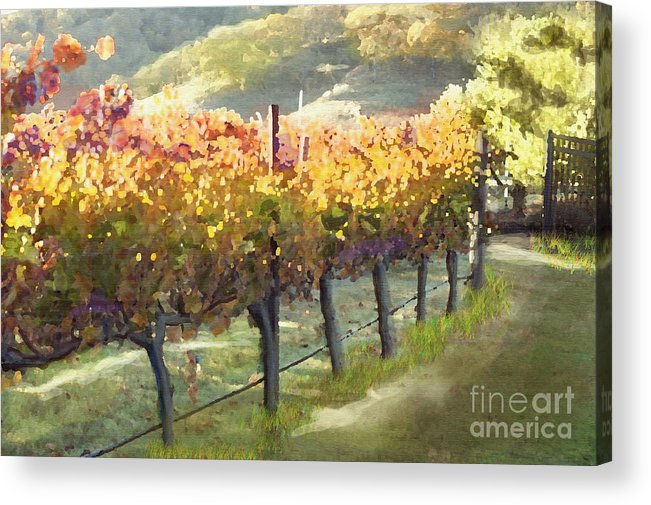 Corde Valle San Martin Ca Acrylic Print featuring the painting California Vineyard Series Morning In The Vineyard by Artist and Photographer Laura Wrede