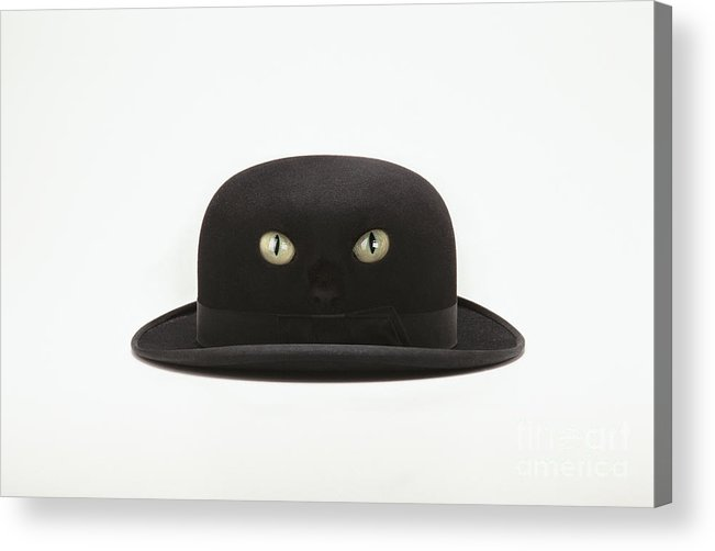 Black Acrylic Print featuring the digital art Cat Hat by Kitty Bitty
