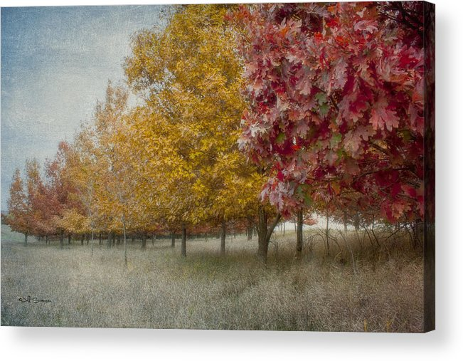 Changing Of The Seasons Acrylic Print featuring the photograph Changing Of The Seasons by Jeff Swanson