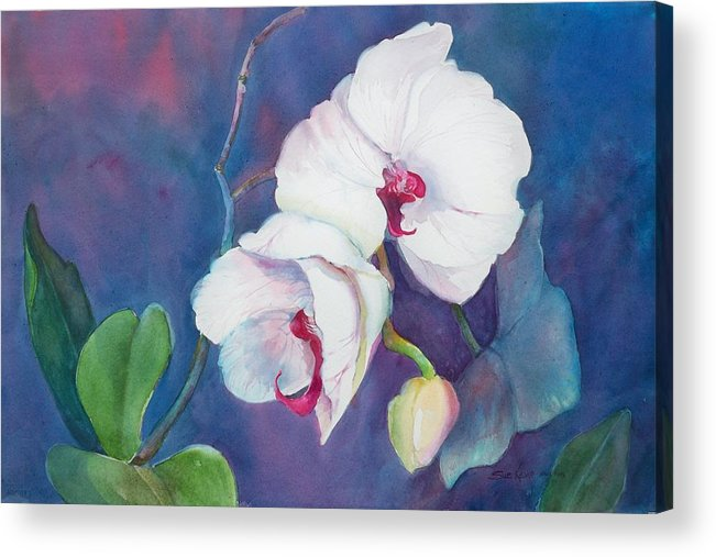 Orchid Painting Acrylic Print featuring the painting Circle Of Life by Sue Kemp