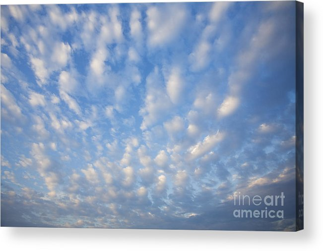 Atmosphere Acrylic Print featuring the photograph Clouds by David Davis