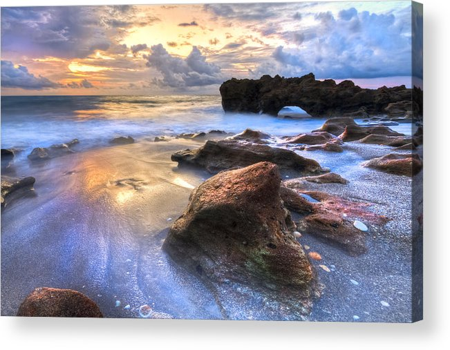Blowing Acrylic Print featuring the photograph Coral Garden by Debra and Dave Vanderlaan
