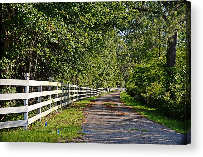 Lane Acrylic Print featuring the photograph Country Lane by Linda Brown