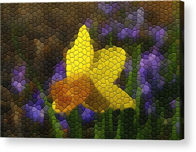 Mosaic Acrylic Print featuring the photograph Daffies And Blue Chionodoxas by Kathryn Meyer